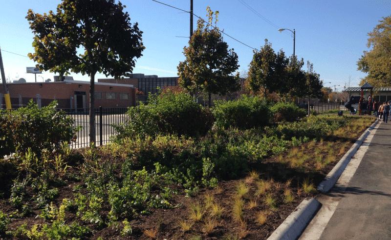 Leland Elementary Playground - Green Buffer