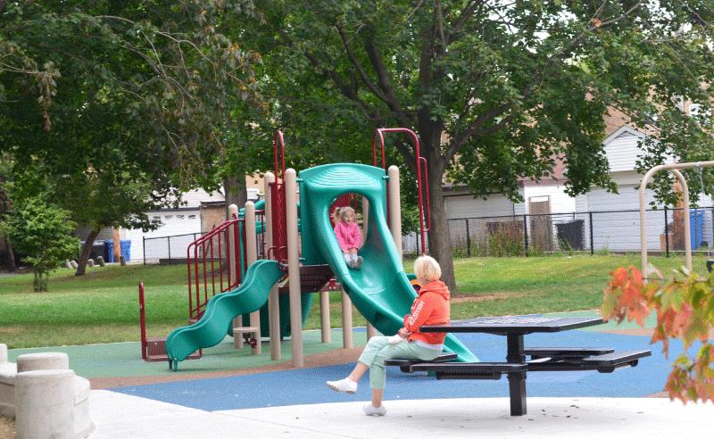 Shabbona Park - Table